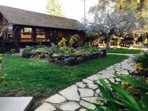 back yard back house